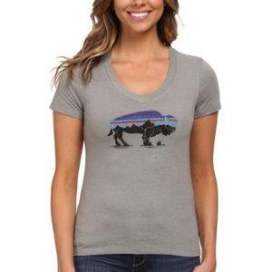 Patagonia | Buffalo Bison Sunrise Teal T Shirt